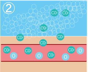 肩こり炭酸ミストの効果説明2