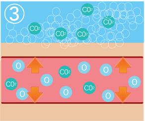 肩こり炭酸ミストの効果説明3