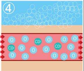 肩こり炭酸ミストの効果説明4
